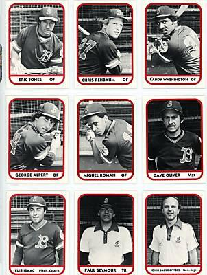 1981 Batavia Trojans