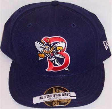 Binghampton Bees / Mets